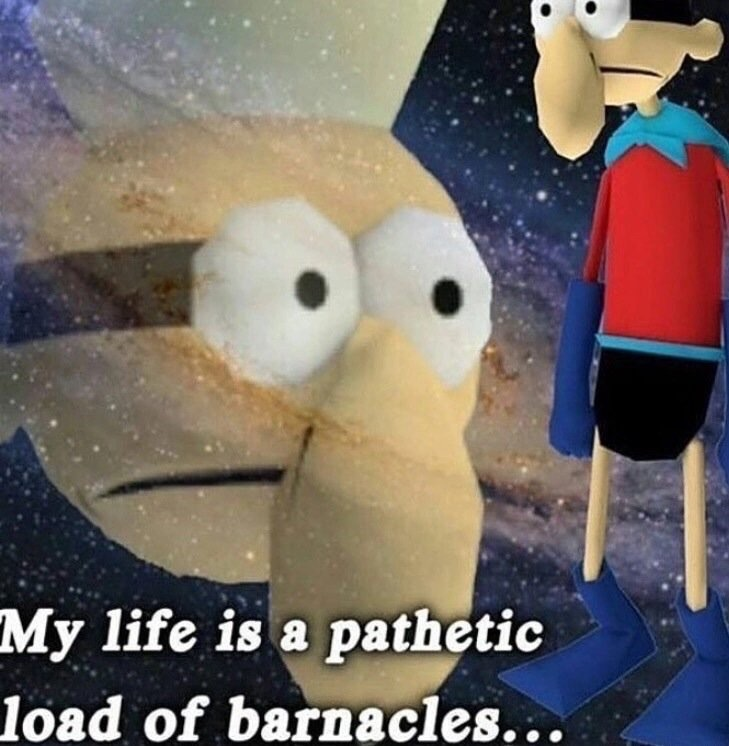 My life is a pathetic load of barnacles meme